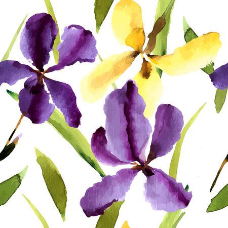 dessin fleurs: Iris, aquarelle, peut être utilisé comme carte de voeux, carte d'invitation pour le mariage, anniversaire et un autre jour férié et le fond de l'été. Vector illustration.