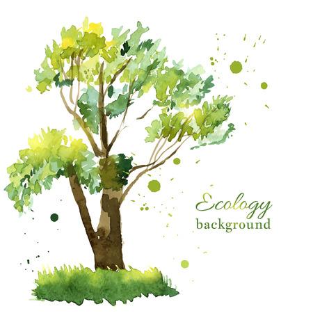 single tree: Vector illustration of stylized summer tree