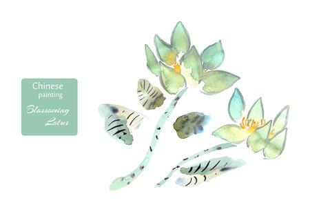 Lotus bloeit waterverf die in de stijl van het Chinese schilderen wordt gedaan. Vector illustratie