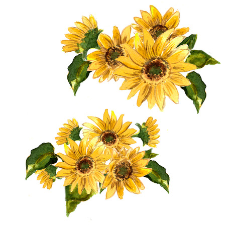 The pattern of blooming yellow flowers sunflower painted in watercolor for your design. Raster illustration Banco de Imagens