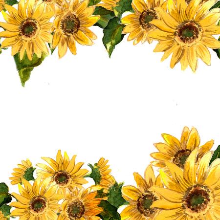 노란색 꽃 피는의 패턴은 디자인에 수채화로 그린 해바라기입니다. 래스터 그림 스톡 콘텐츠 - 43787312