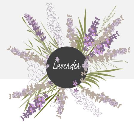 illustratie lavendel bloem  Spring lavendel bloem  Wenskaart lavendel bloem  samenstelling van de zomer lavendel bloem  Spring lavendel bloem  Tuin lavendel  Mooie lavendel  Delicate lavendel Stock Illustratie