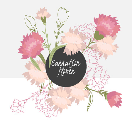 Illustration with beautiful flowers carnation. Vector