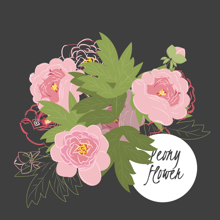 Illustration with beautiful flowers peony. Vector