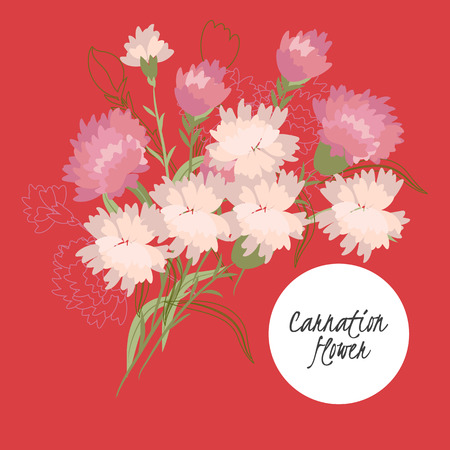 carnation: illustration carnation flowerSpring carnation flowerGreeting card carnationSummer composition carnationSpring carnation flowerGarden carnation flowerBeautiful carnation flowerDelicate carnation