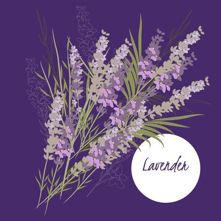 illustratie lavendel bloem
