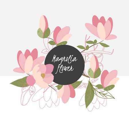 magnolia: illustration magnolia flower