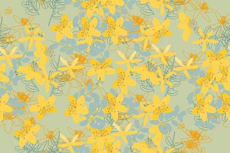 wort: Floral retro vintage background, vector illustration, St.Johns Wort (Latin: Hypericum perforatum) Illustration