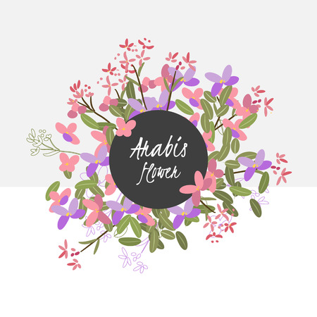 plants and flowers: Floral arabis retro vintage background, vector illustration