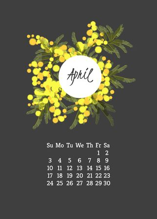 mimosa: Calendar for 2016 with flowers mimosa  for your design