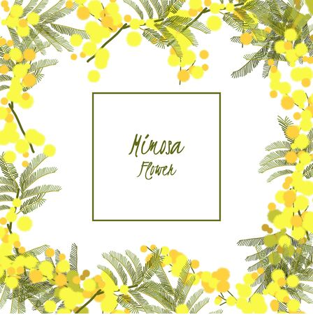 Floral retro vintage background, vector illustration, mimosa Illustration