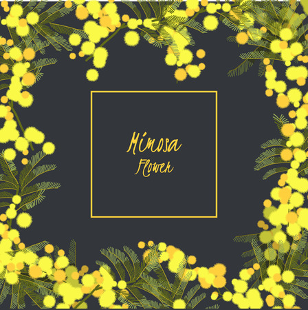Bloemen retro vintage achtergrond, vector illustratie, mimosa