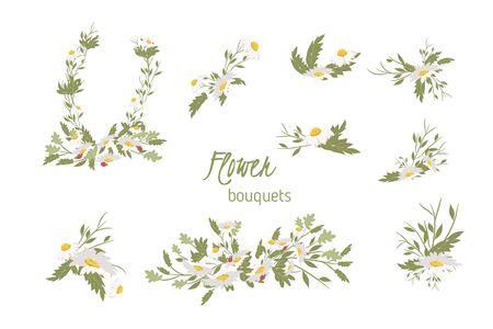 chamomile: Floral chamomile retro vintage background