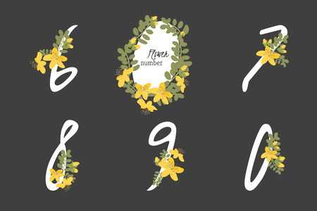 wort: Floral  herb St. Johns wort collection numbers in vintage color. Six, seven, eight, nine, zero- signs vector Illustration