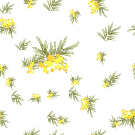Floral  mimosa retro vintage background, vector illustration