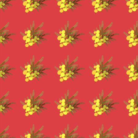 mimosa: Floral  mimosa retro vintage background, vector illustration