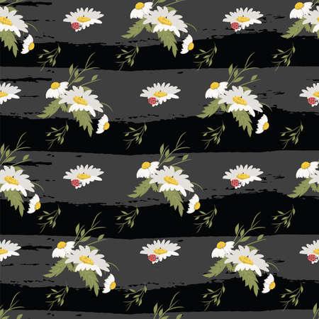 chamomile: Floral chamomile retro vintage background, vector illustration