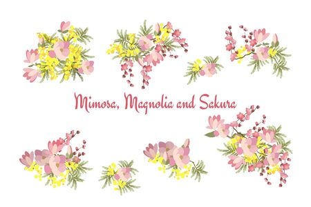 mimosa: Floral background vector illustration. Sprig of mimosa, flowers and leaves of sakura, cherry and magnolia, spring background, floral greeting card