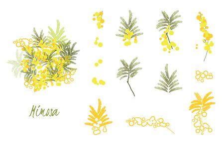 추상 꽃 봄 그림입니다. 미모사 꽃