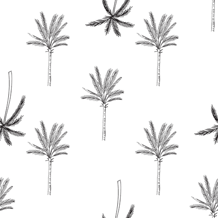 Hand drawn seamless pattern with palm trees, isolated on white background.