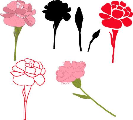 Floral carnation retro vintage background, vector illustration Vettoriali