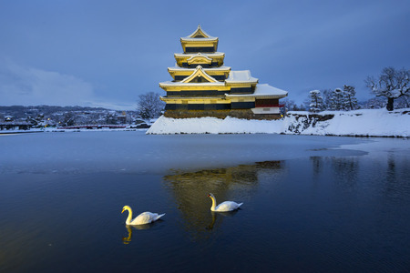 Swan and Matsumoto Castle in Winter, Japan