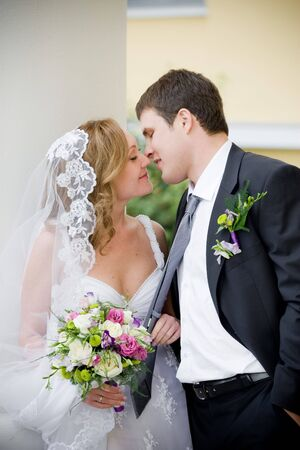 On the image there is bride and bridegroom. Stock Photo - 4641527