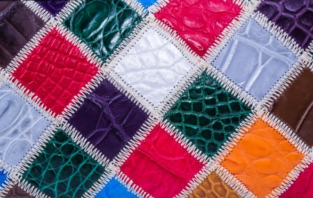 currying: skin crocodile textured leather five Stock Photo
