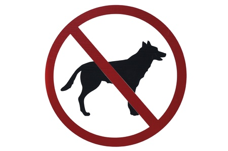 No pets sign               photo