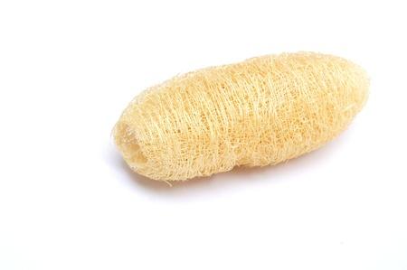 dried gourd: Natural scrubber of dried Ridge gourd