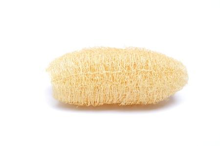 scrubber: Natural scrubber of dried Ridge gourd