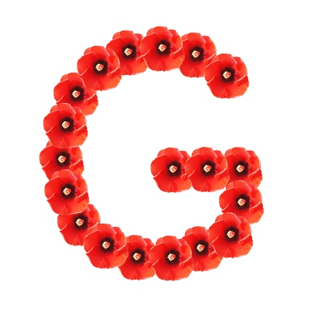 Flower number on white background - Letter G photo