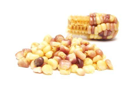 waxy: Boiled waxy corn on white background   Stock Photo