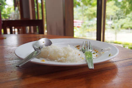 leftover: food leftover on plate with spoon and fork Stock Photo