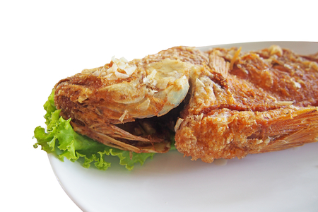 nilotica: close up head of fried nile tilapia fish with green lettuce on white plate
