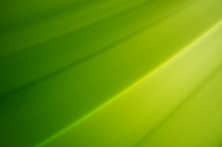 pleat: line on light green pleat color abstract background
