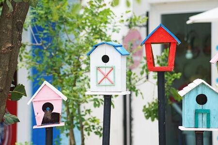 maison oiseau: blanc maison d'oiseau en bois dans le jardin Banque d'images