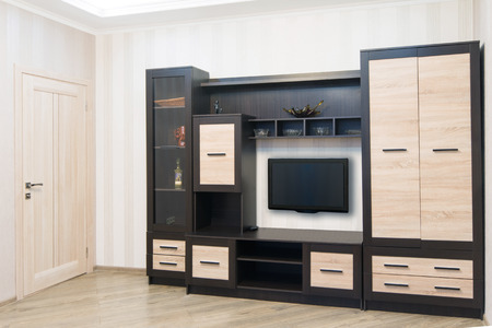 living room furniture: Spacious room with furniture, large closet and TV. Modern Style