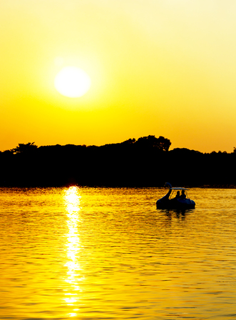 swan lake: Silhouette a couple on swan boat in the lake, love and romantic concept