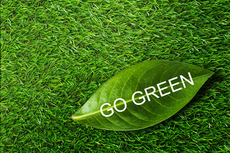 conservative: Ecology concept, save energy, text go green and leaf on grass background Stock Photo