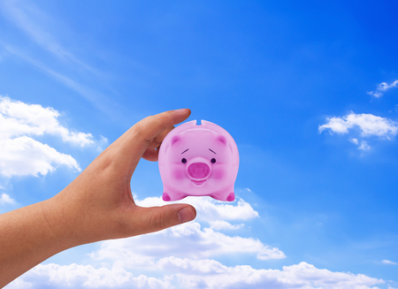 Financial planning concept, money solution, hand and piggy bank Stock Photo