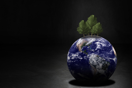 Ecology concept, green energy, the earth and tree on dark background