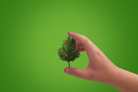 Ecology concept, save nature, hand and tree on green background