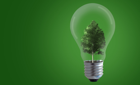 Energy concept, tree and light bulb on green background, nature and ecology Stock Photo