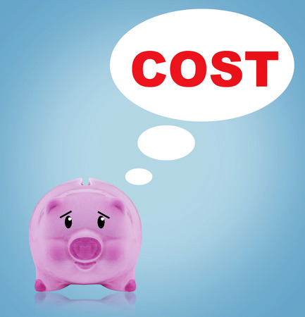 Business financial cost concept, pink piggy bank on blue background
