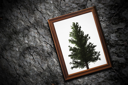 Ecology concept, global warming, trees extinction concept