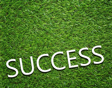 Business success concept on green grass background