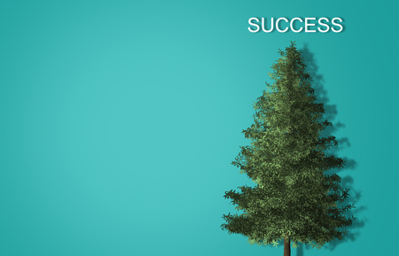 Business success concept on top of the tree with blue background