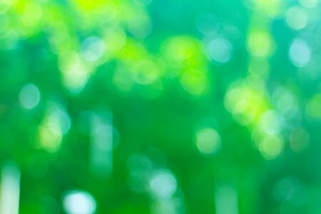 Abstract green bokeh blur background, nature and ecology concept