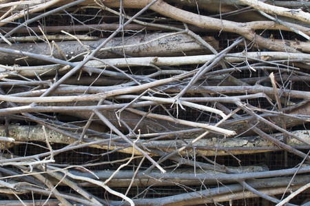 twigs, wood bundle photo